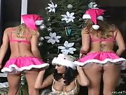 Good girls Dee Nikki and Marlie Moore are ready for their Christmas presents